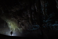 Świecąc w ciemności, Exit Cave, Tasmania, Australia Michał Ciszewski